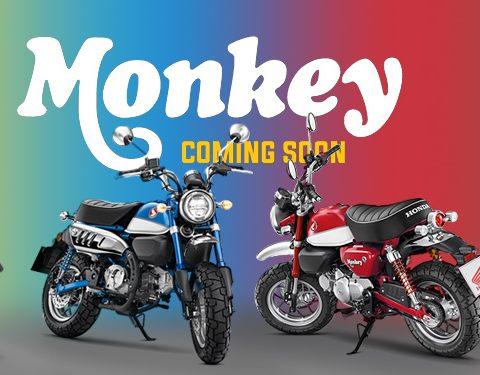 Honda Monkey 125 Colours