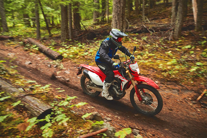 2019 Honda CRF450L Review