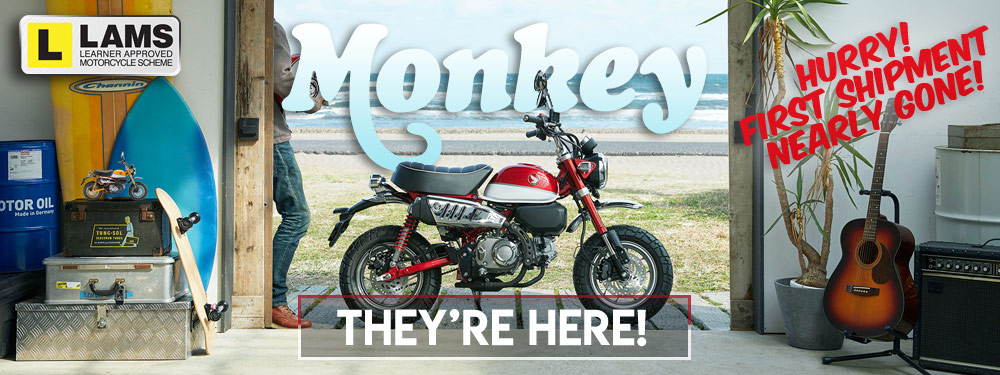 Honda Monkey Bikes Now Available