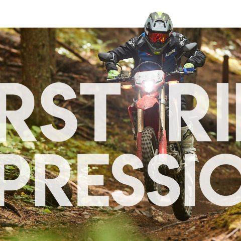 2019 Honda CRF450L Reviews